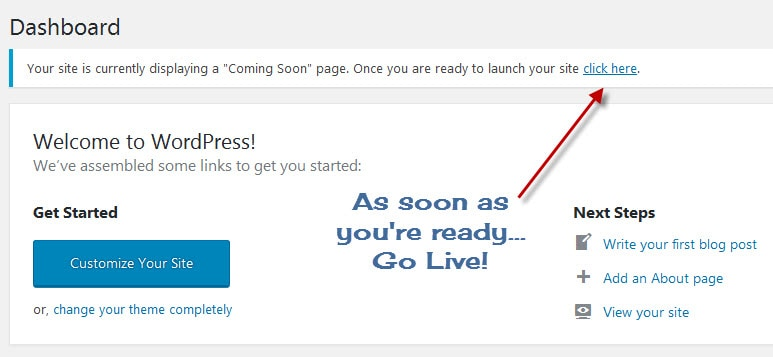 Setting your wordpress to live